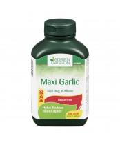 Adrien Gagnon Maxi Garlic Enteric Tablets Bonus Size