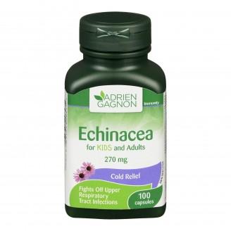 Adrien Gagnon Natural Health Echinacea Capsules