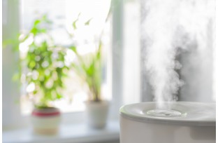 Everything to Know About Humidifiers