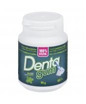 Denta Gum 100% xylitiol, Mint Flavour