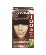 Garnier 100% Color Ultra Long-Lasting Shiny Colour