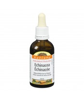Holista Dealcoholized Echinacea