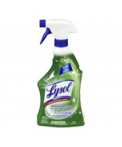 Lysol All-Purpose Cleaner Spray