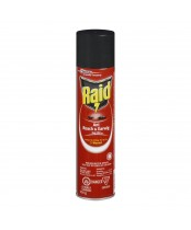 Raid Ant, Roach and Earwig Bug Killer