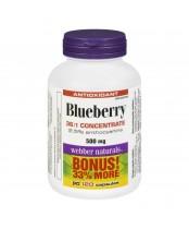 Webber Naturals Blueberry Bonus Pack