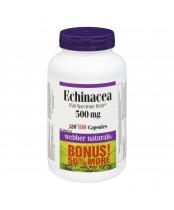 Webber Naturals Echinacea Herb Bonus Pack